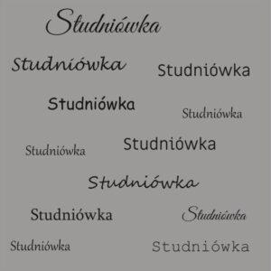 Tła fotograficzne na studniówkę - STU003